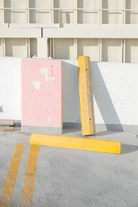 DSCF7095 200x300 - Gelbe Streifen an Rosa