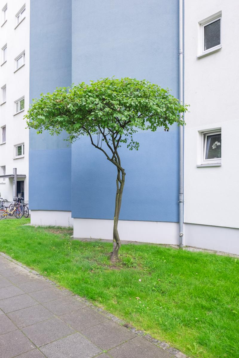 Kreuzberg1 1 von 2 - Berlin