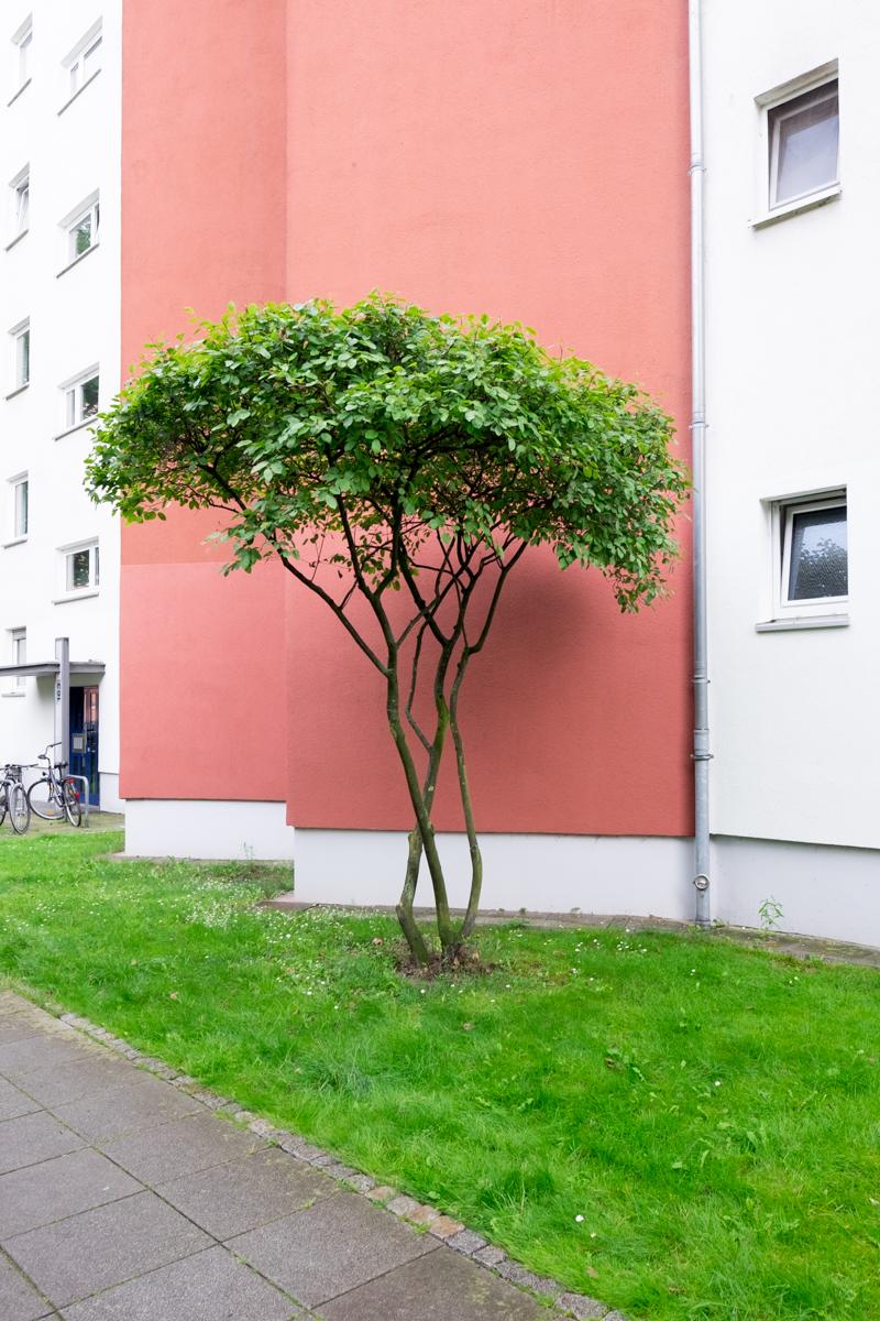 Kreuzberg1 2 von 2 - Berlin